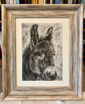 Framed donkey.jpg