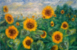 Sunflower Field (2).jpg