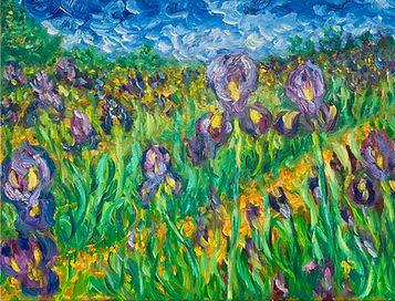 Irises int he Grass.jpg