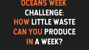 Waste Audits and Oceans Week Waste Challenge Review