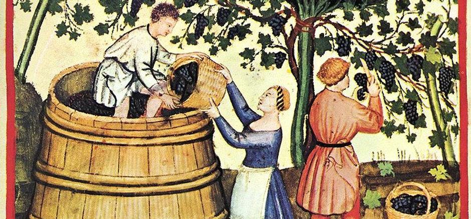 history of wine.jpg