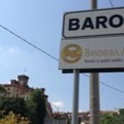Cascina Ballarine Barolo Tasting