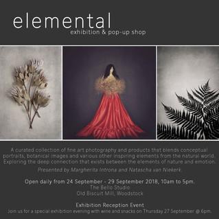 Exhibition: Elemental