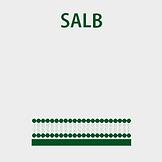 1-SALB.png