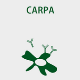 5-CARPA.png