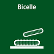2-Bicelle.png