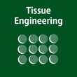9-Tissue-Engineering.png