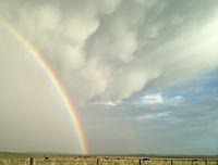 RainbowOntheRanch.jpg