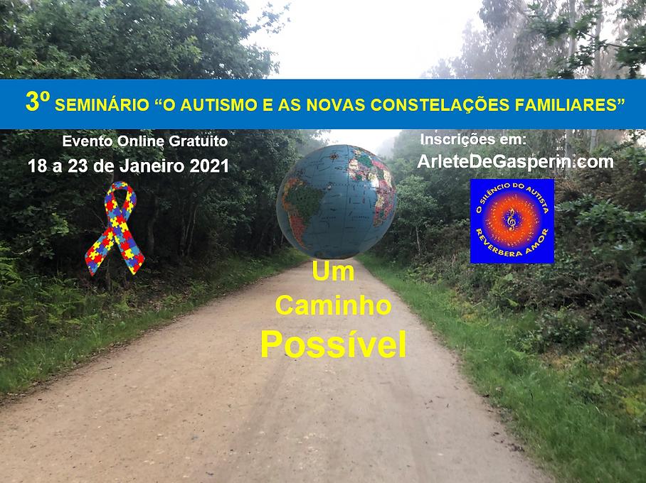3 seminario internacional.png