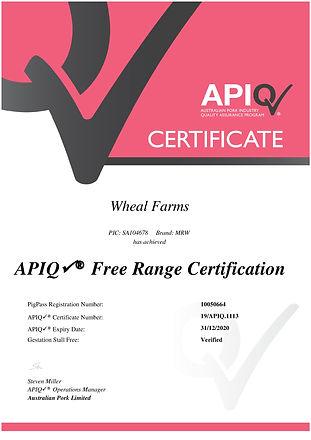 APIQ Certificate-2020 (1).jpg
