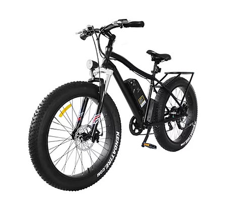 Daymak Electric Fat Bike (Wild Goose)