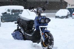 eagle-snow.jpg