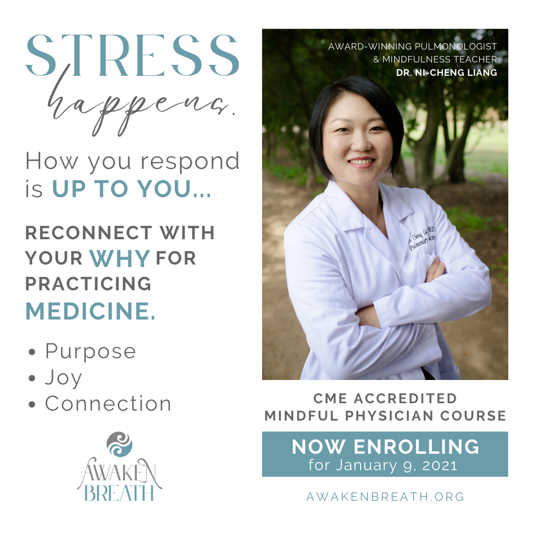 Mindful Physician Course 1:1 with CME