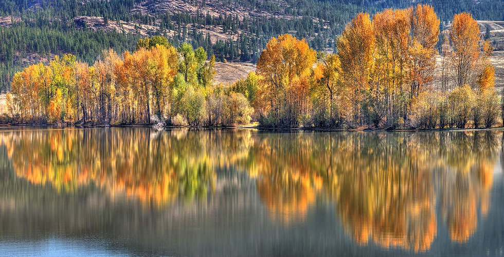 Wood Lake Fall Reflections