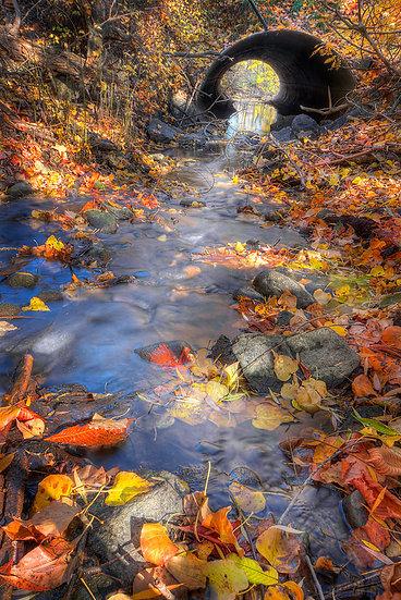 Wood Lake Fall Reflection