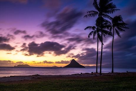 _IMG3351-HAWAII-CHNIA-MANS-HAT-SUNRISE-PALM-TREES.jpg