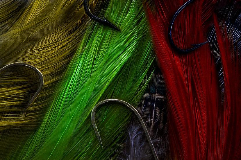 Hooks & Feathers