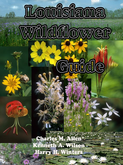 Louisiana Wildflower Guide