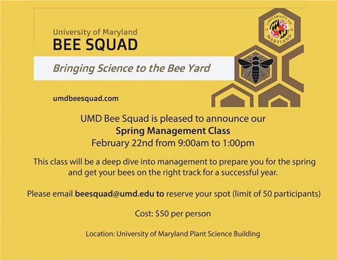 UMD BeeSquad Feb 2020.png