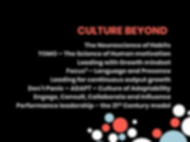 picture of culture beyond topics for web