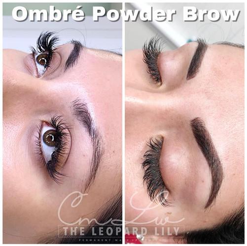 Powder Brow Procedure 26 ombre bold.jpg
