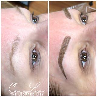 Hairstroke Eyebrows with Shading 1.jpg