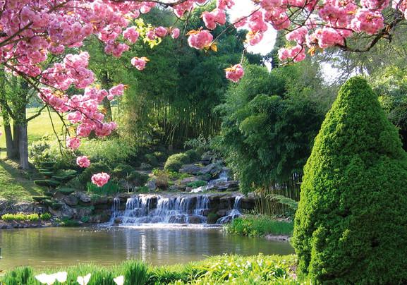 Rosa Parks Garden