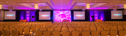 PROJECTION SCREEN WITH DRESS KITS