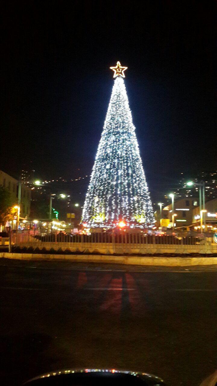 Haifa tree christmas.jpg