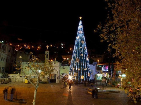 "Holy Land- Nazareth: ""The Christmas tree, tree of life, unity and light to all."""