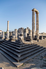 Temple of Apollo columns.jpg