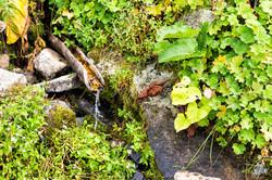 kayaların arasından akan su