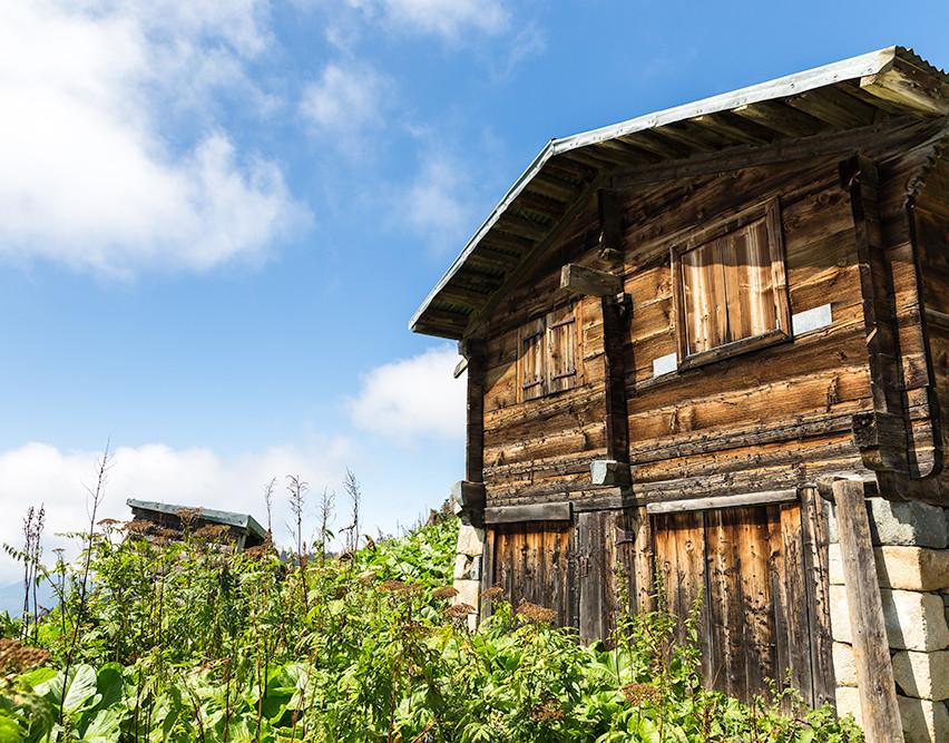 Pokut yaylasında bir yayla evi