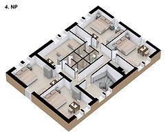 3D-4NP.jpg