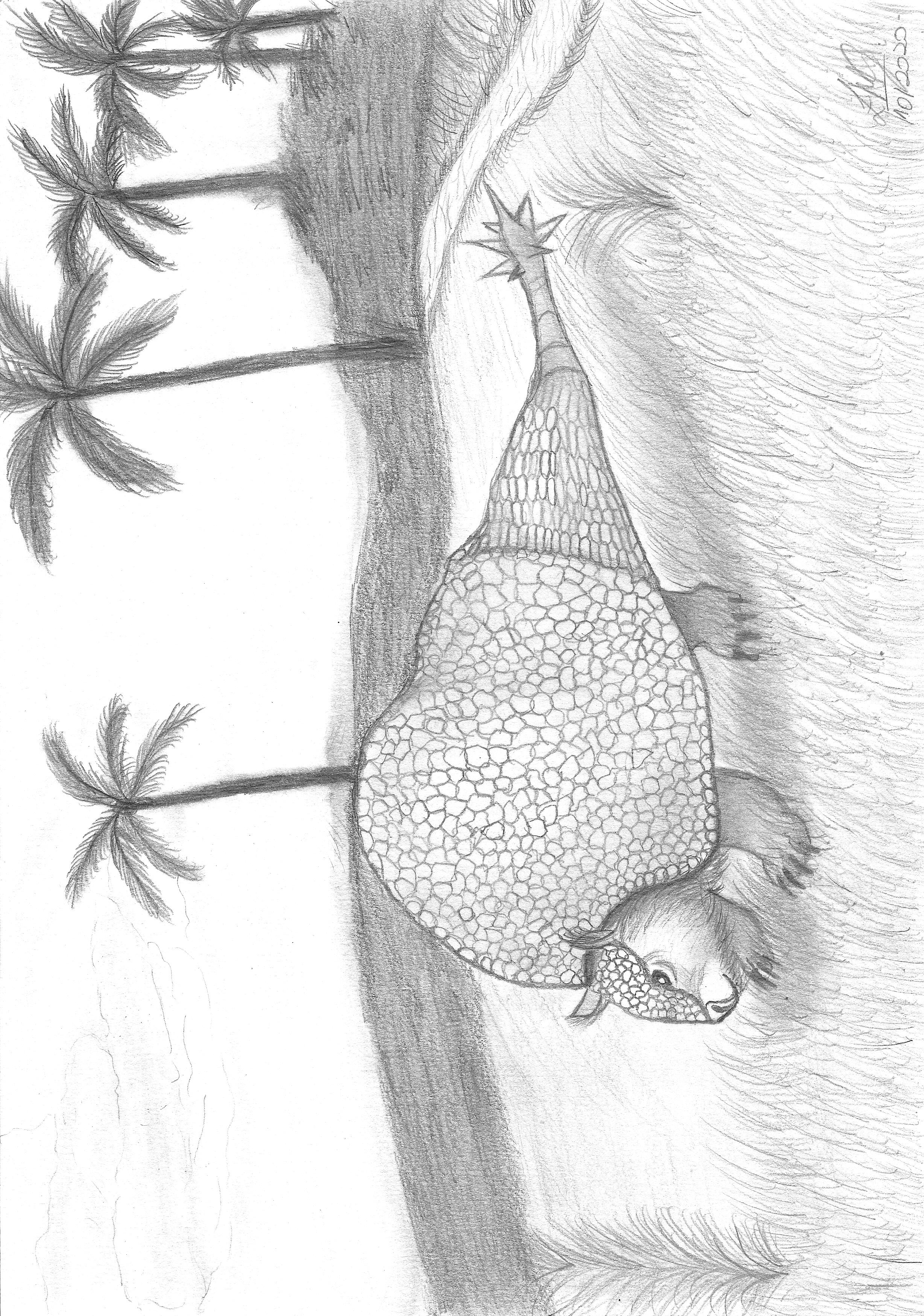 Izadora Marchi_Gliptodonte Doedicurus