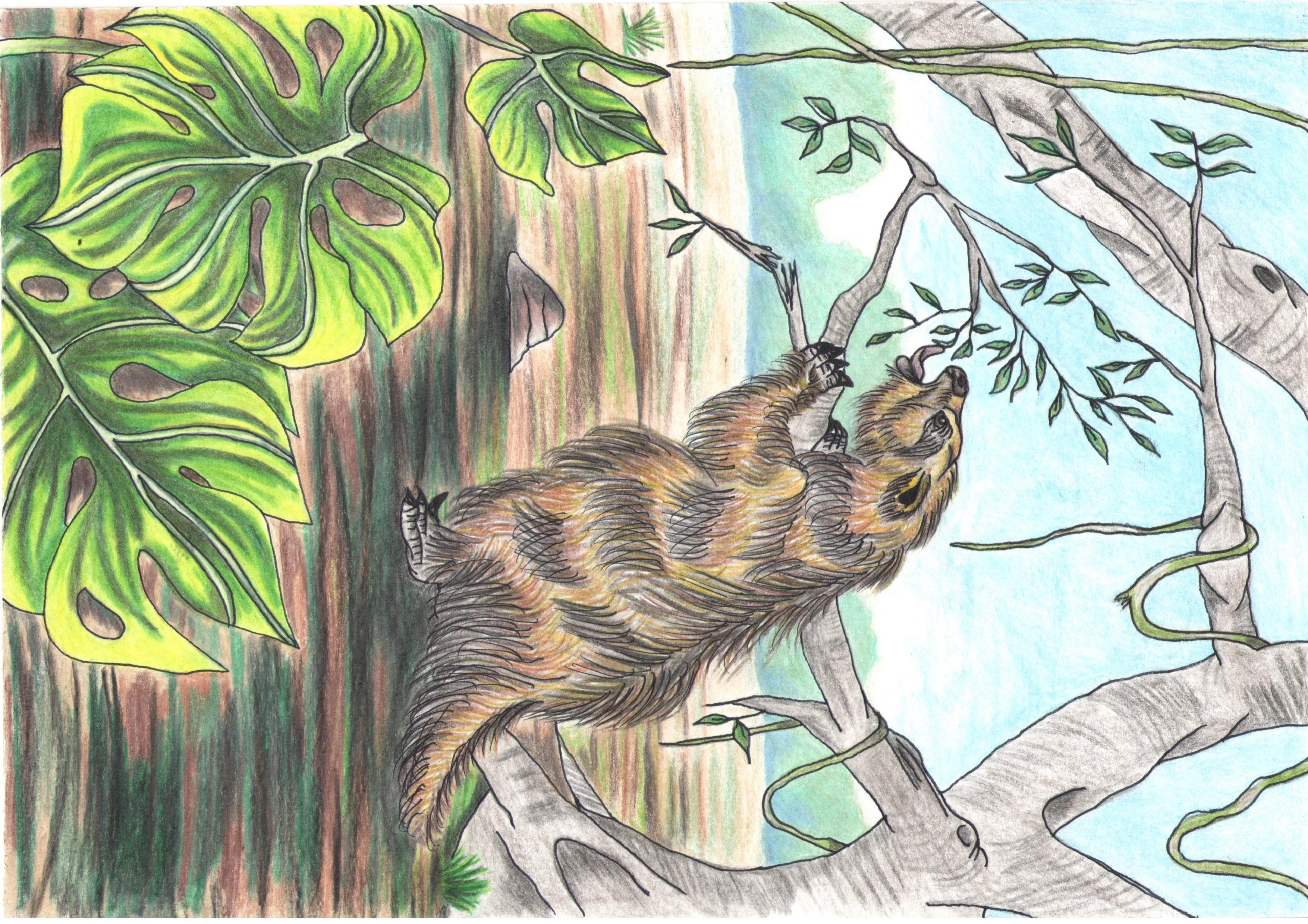 Mateus_Estéfano_Rodrigues__Megatherium.