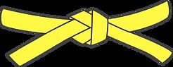 yellow belt.png