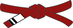 red belt level 2.png
