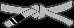 grey belt level 2.png