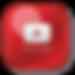 2896e2c1a2ae762198c75f8b94c10f21-youtube