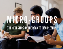 Microgroups for website (3).png
