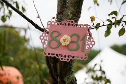 Maine-farm-wedding-photographer-0051.jpg