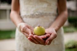 Maine-farm-wedding-photographer-0020.jpg
