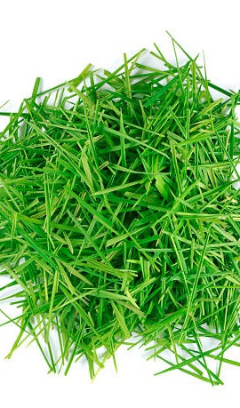 Grass Clippings...Get Rid of Them by Lawn-A-Mat