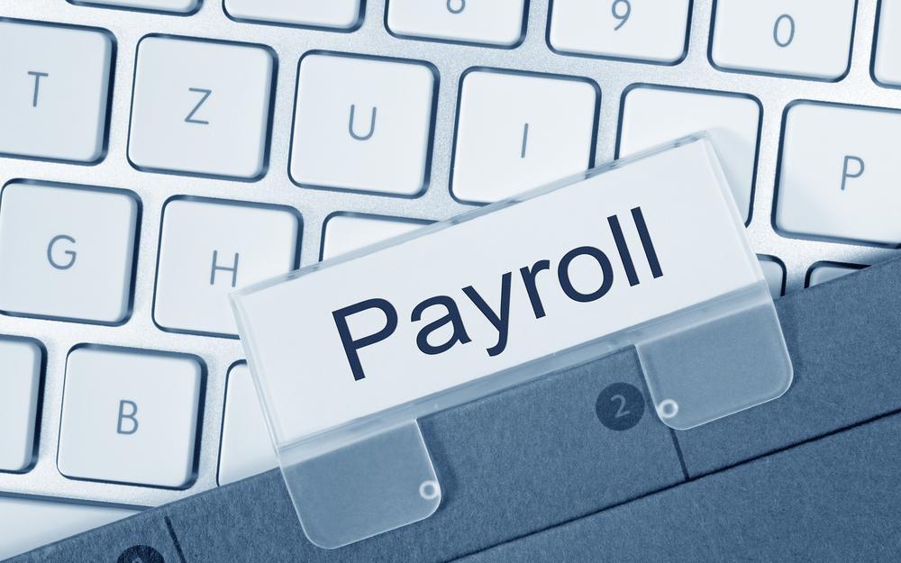 30 Min. Payroll Consultation