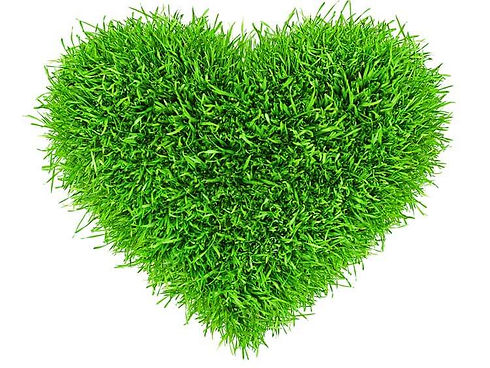 Customers love Lawn A Mat. Visit our Testimonials Page.