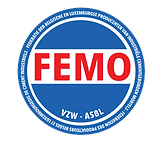 femo-logo-big.png
