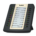 Botonera de expansión EXP20. LCD gráfico 160 x 320. 20 teclas físicas