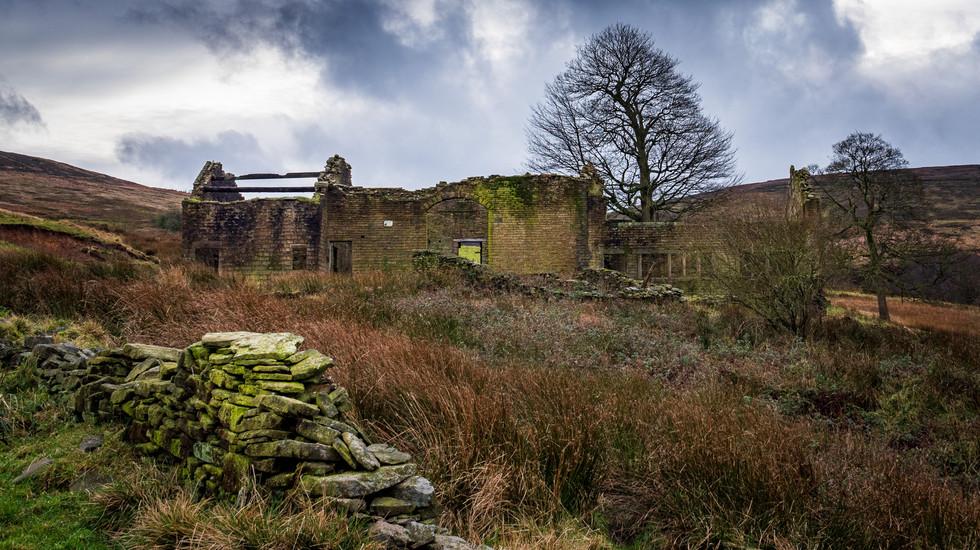 Royd Farm-13.jpg