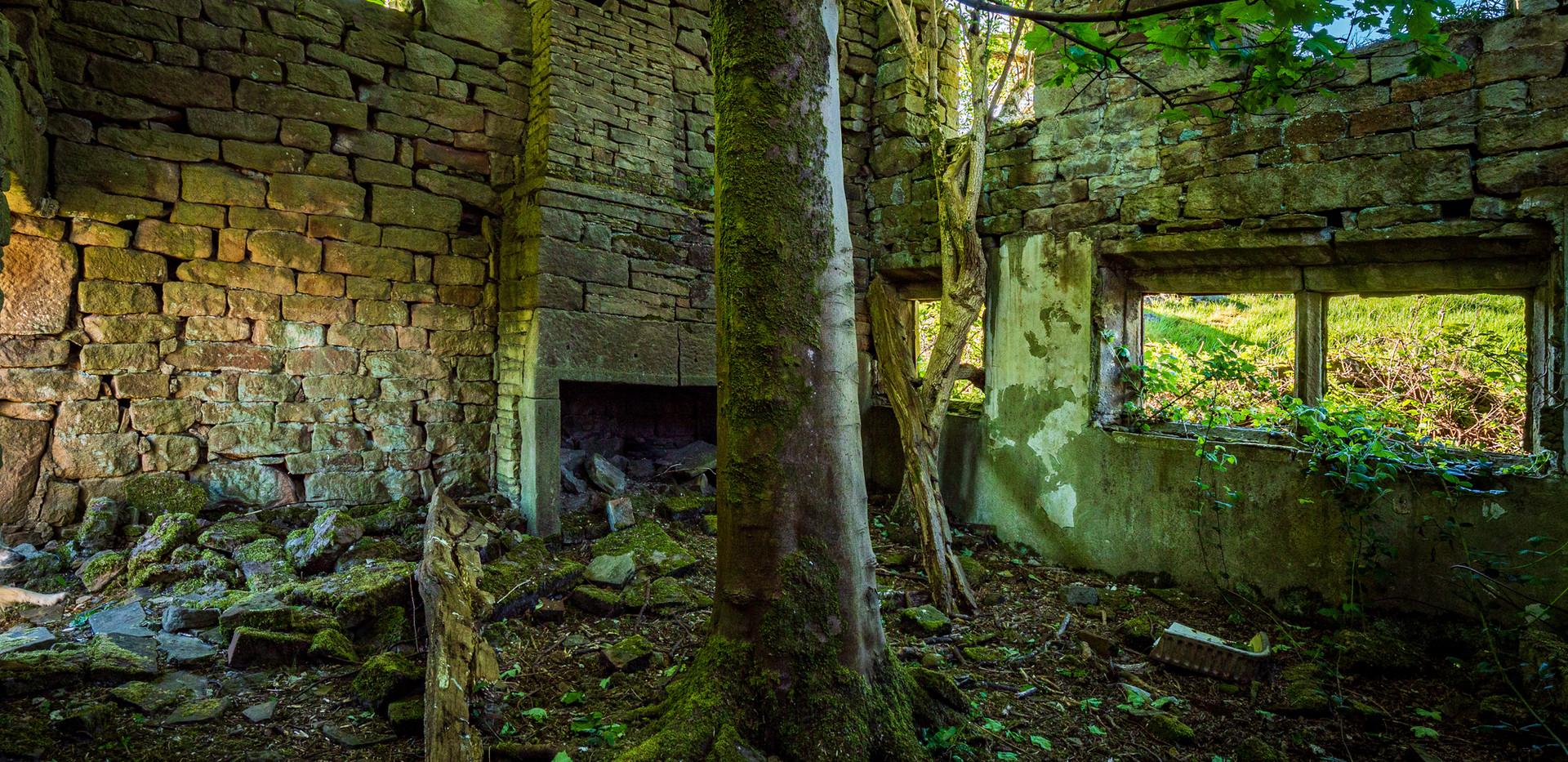 Old Ash Farm-10.jpg